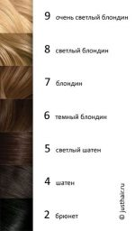 6 тон волос – Уровни тона волос (картинки). – etheliana — LiveJournal